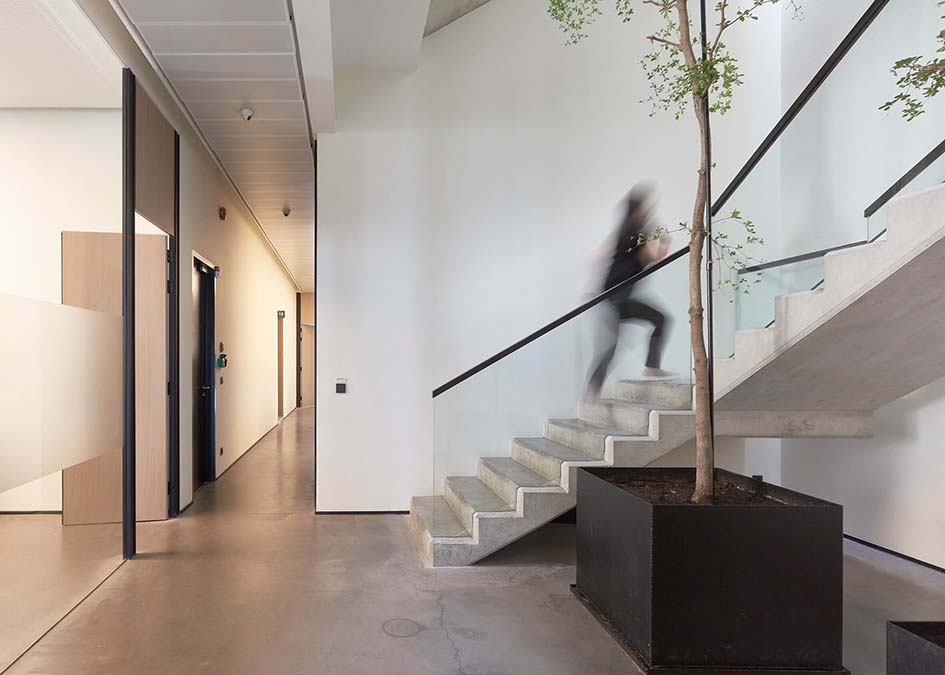 Bringing ease into Mitsulift's offices